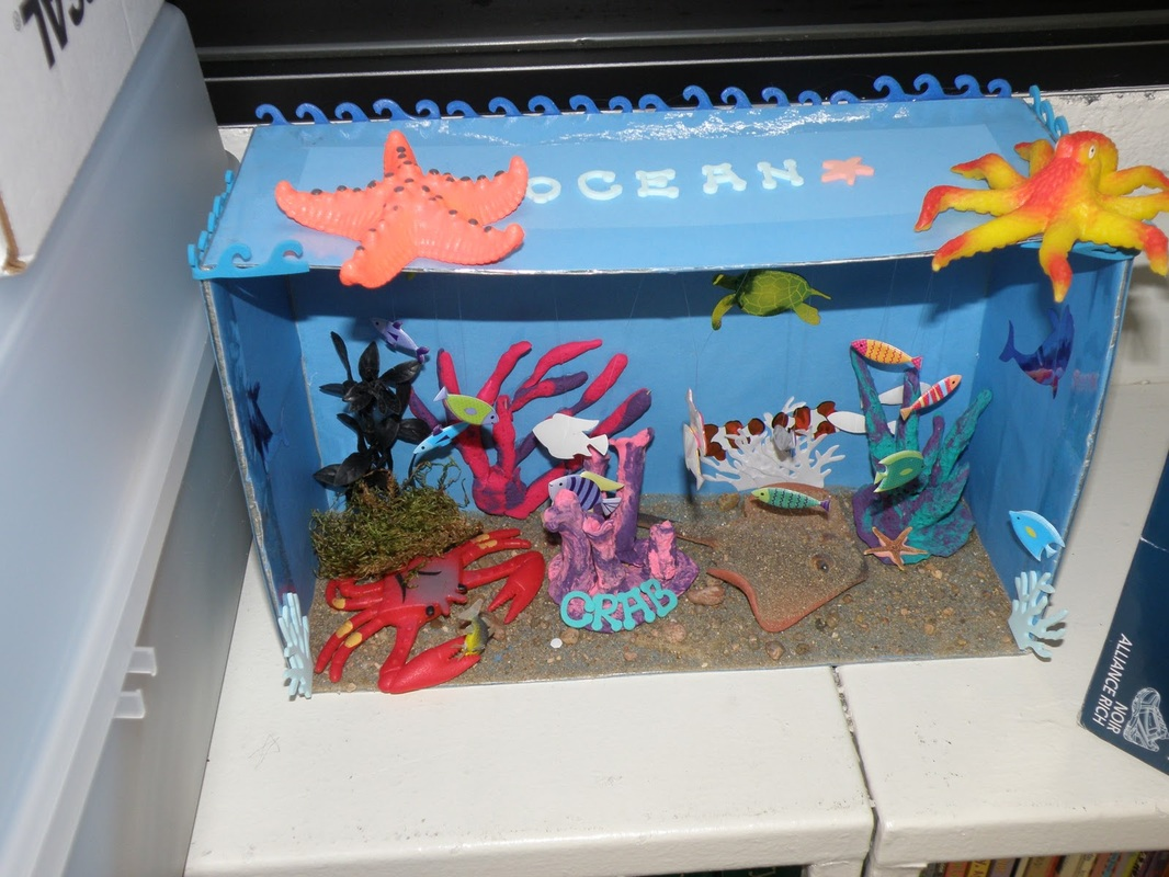 Make Your Own Diorama: Rainforest Project- Diorama Examples/how-to